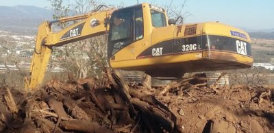 Excavator busy removing vegetation and topsoil